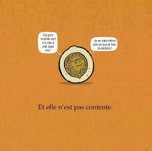 """Extrait de """"Ceci est une noix"""" Auteur, auteure, autrice : PrincessH, Editions Lapin"""