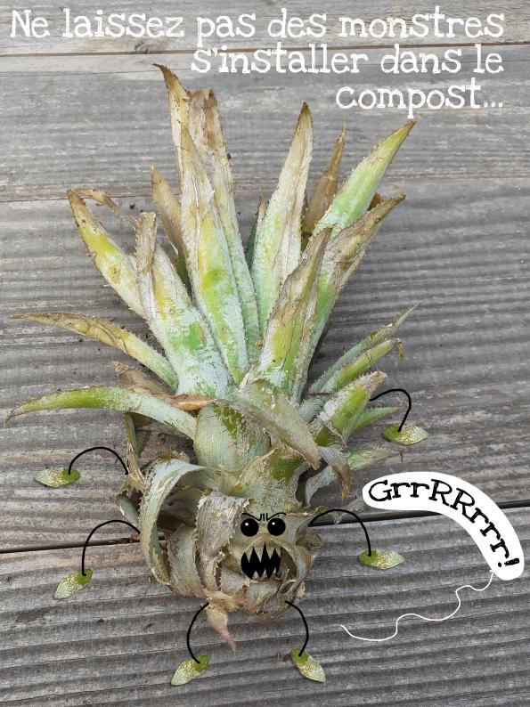 Les Monstres dans le Compost, photos et illustrations : PrincessH