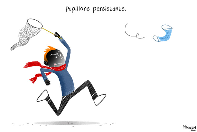 Papillons persistants