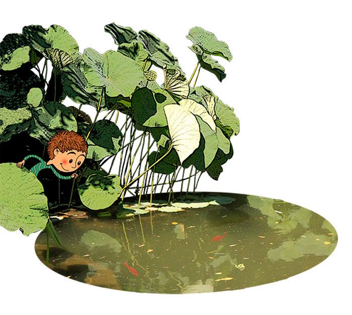 Une mare, des feuilles de lotus, un petit garçon, 2 poissons rouges.