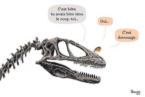 extinction des oiseaux