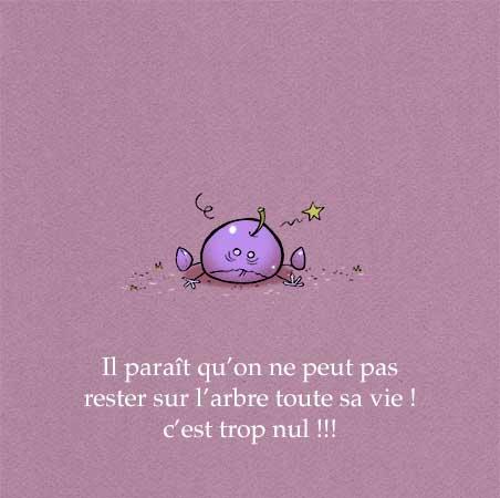 """Extrait de """"Prune et Prétention"""", écrit et illustré par PrincessH, aux éditions Petit Lapin, mai 2019."""